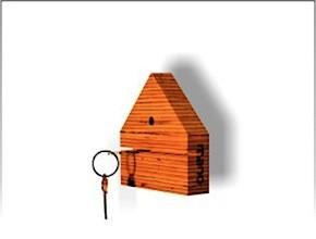 Plywood Key Holder